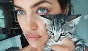Irina Shayk tiene un compañero inseparable: un gato que rescató