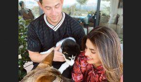 Nick Jonas y Priyanka Chopra hacen crecer a su familia