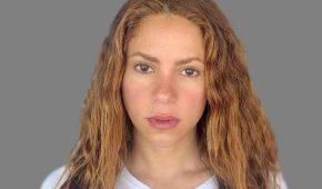 Shakira vendió todo su catálogo musical
